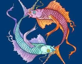 20 Лютого: який знак зодіаку - риби або вдалий? фото