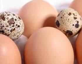Актуальне питання: скільки в одному яйці грам білка? фото