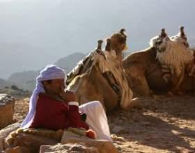 Як почати вивчення арабської мови фото