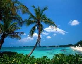 Багамські острови - субтропічний рай в атлантичному океані фото