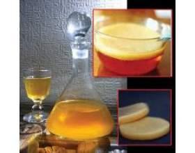 Цілющі властивості чайного гриба фото