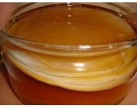 Чайний гриб - домашній доктор фото