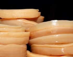 Чайний гриб - протипоказання. Властивості чайного гриба фото