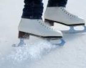 Льодовиковий період: все про ковзанах фото