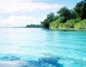 Галапагоські острови: гармонія природи і людини фото