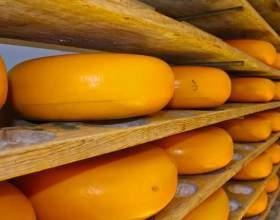 Голландські сири: приготування, калорійність, користь фото