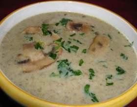 Грибний суп-пюре - смачне, поживне і корисне блюдо фото