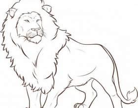 Як намалювати лева олівцем? фото