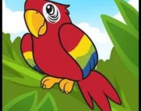Як намалювати папугу? фото