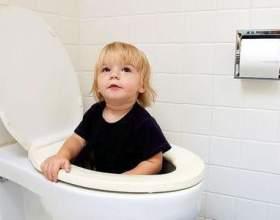Як привчити дитину до горщика, і чого робити не варто фото