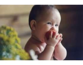 Як привчити дитину до твердої їжі фото