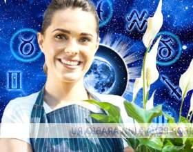 Які квіти вам радить астрологія фото