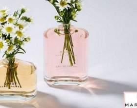 Квінтесенція ніжності: лінійка парфумів daisy blush by marc jacobs фото