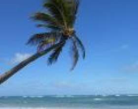 Канарські острови: маленький шматочок раю на землі фото