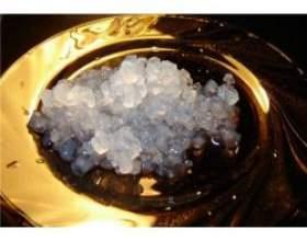 Лікувальний рисовий гриб фото