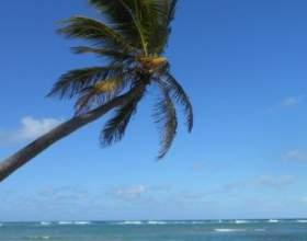 Райські острови сейшели: ідеальне місце для романтичного відпочинку фото