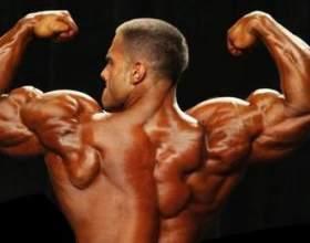 Чоловічий статевий гормон тестостерон: норма і вплив на організм фото