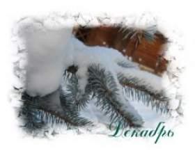 Народні прикмети грудня фото