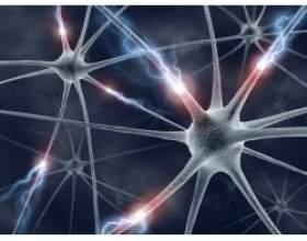 Народні способи лікування епілепсії фото