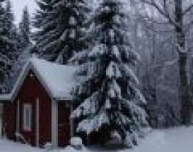 Новий рік в фінляндії фото