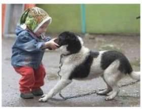 Чи потрібно заводити для дитини домашня тварина? фото