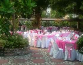 Святкове прикрашання столу на весілля фото