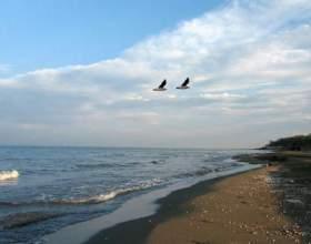 Відпочинок на каспійському морі в росії. Відгуки туристів фото