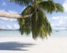 Сейшельські острови: рай на землі фото
