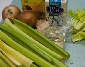 Схуднення за допомогою супів: низькокалорійні перші страви фото