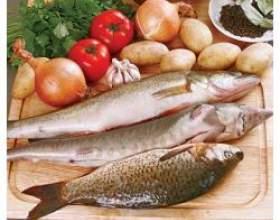 Користь і шкода риби і морепродуктів фото