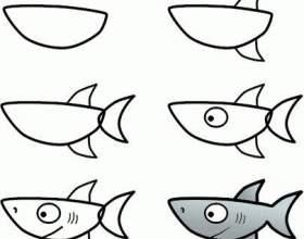 Прості уроки малювання: як намалювати акулу фото