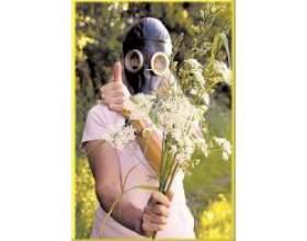 Специфічні фактори, що викликають алергію фото