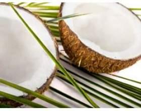 Властивості і застосування масла кокоса фото
