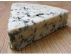 Сир з пліснявою: особливості вибору та зберігання, користь і шкода фото