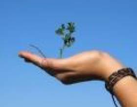 Догляд за руками: гімнастика, вправи для пальців і кистей фото