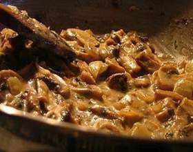 Увага: грибний соус з печериць і інші блюда з грибами! фото